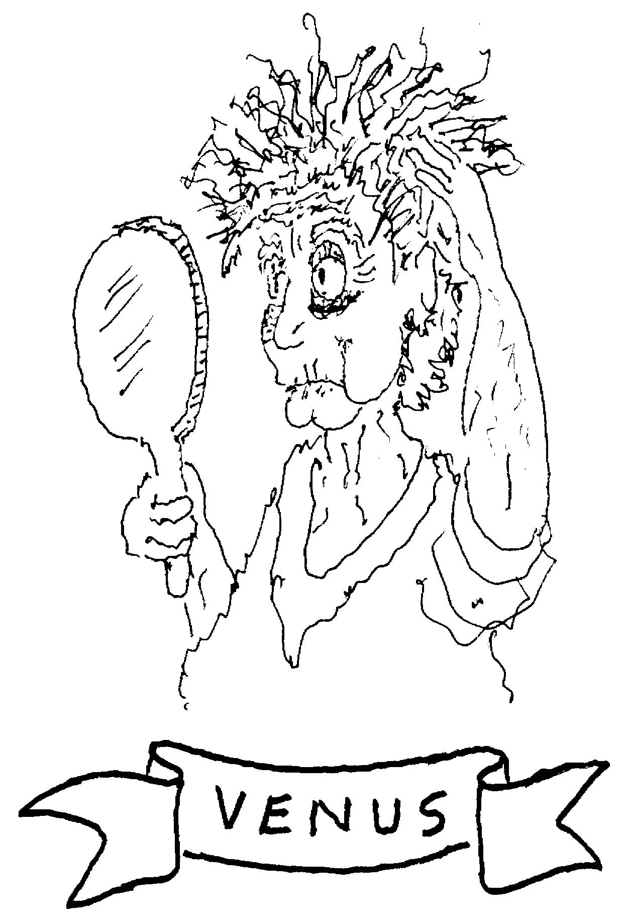 Sketch of Venus